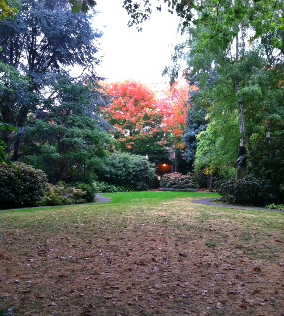 university of washington garden